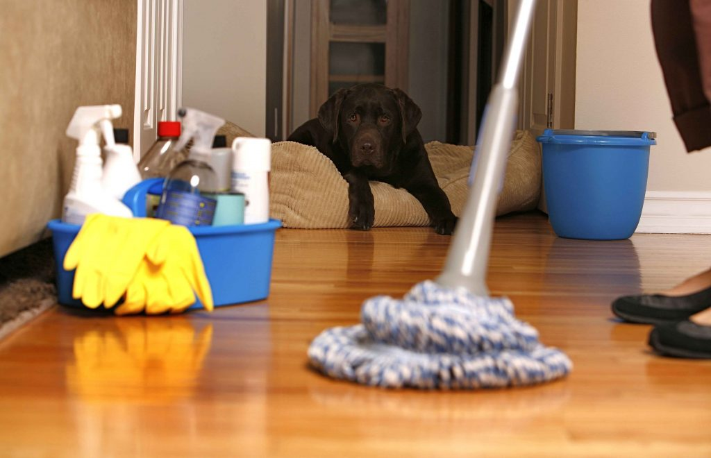 House Cleaning Oakland
